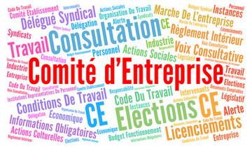 Avocat Stéphanie Vignollet : comité d'entreprise à Saintes
